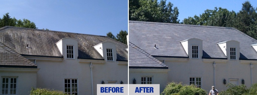 roof before and after pressure washing