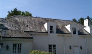 Before Roof Cleaning by Grime Fighters in Lehigh Valley, PA