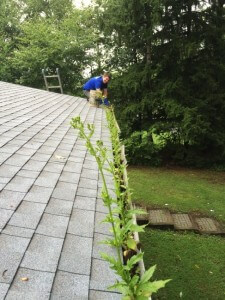 Gutter Cleaning in Progress Lehigh Valley, PA