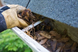 Gutter Cleaning in Lehigh Valley, PA by Grime Fighters
